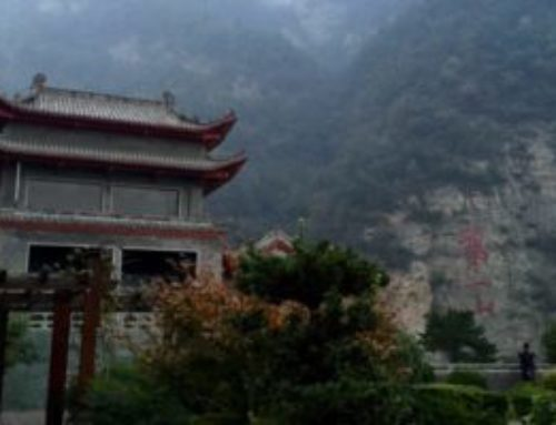 The Hidden Gems We Learned In China